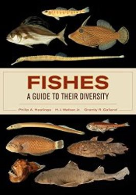 Fishes : a Guide to Their Diversity