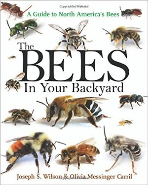 The bees in your backyard : a guide to North America\'s bees
